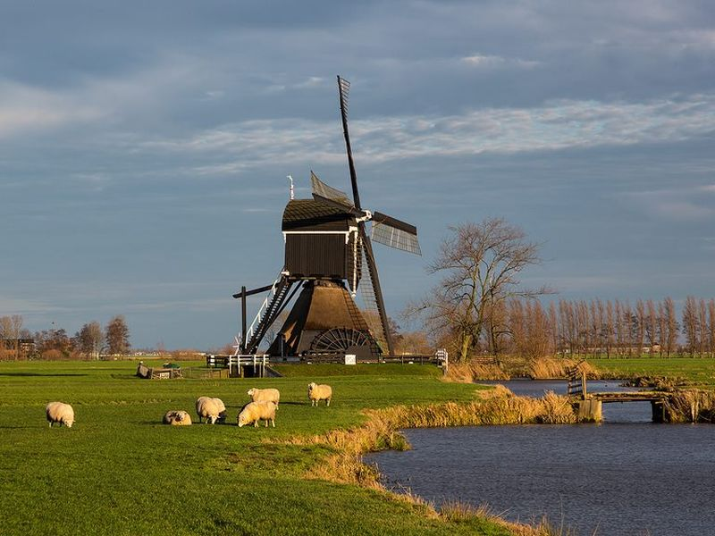 Экскурсия окрестностями Амстердама