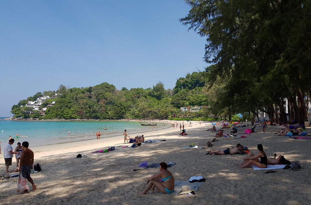 На берегу растут тайские хвойные деревья