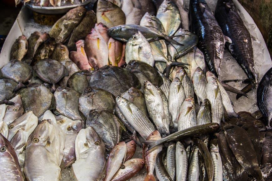Рыба на рынке в районе Ват Бун