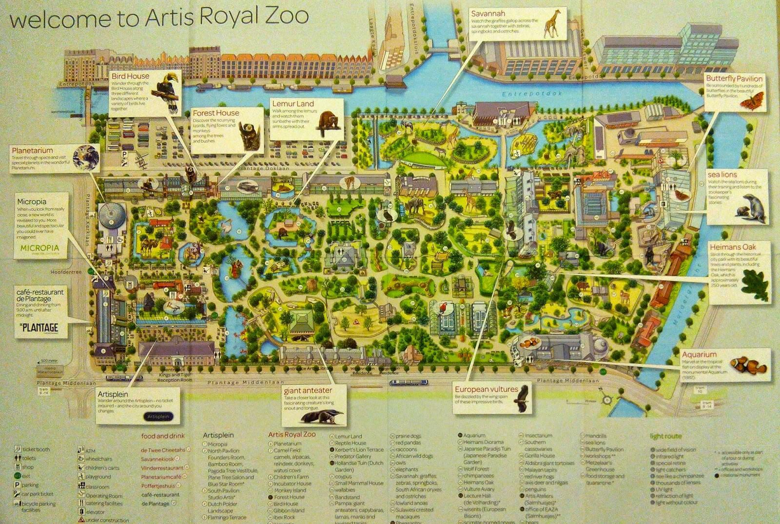 Карта зоопарка «Артис»