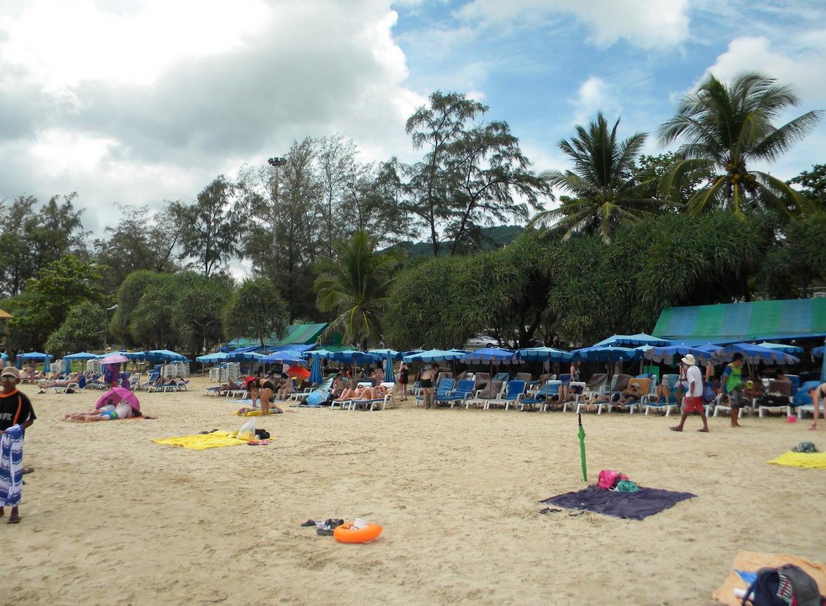 На пляже установлены лежаки и зонтики