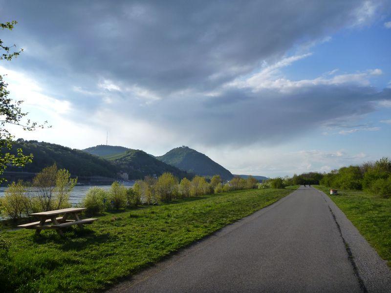 Велопрогулка вдоль Дуная