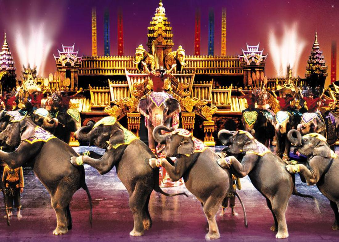 Выступление слонов