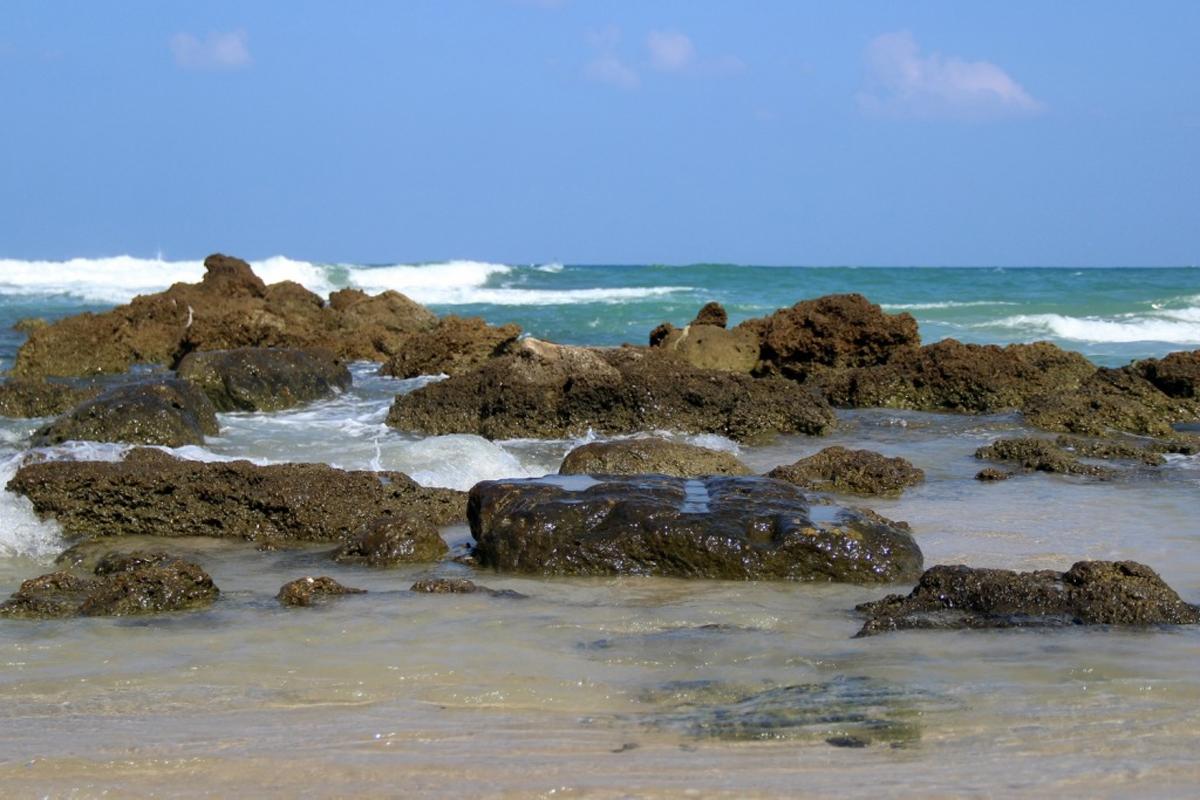 Южная часть пляжа Гиват Ольга