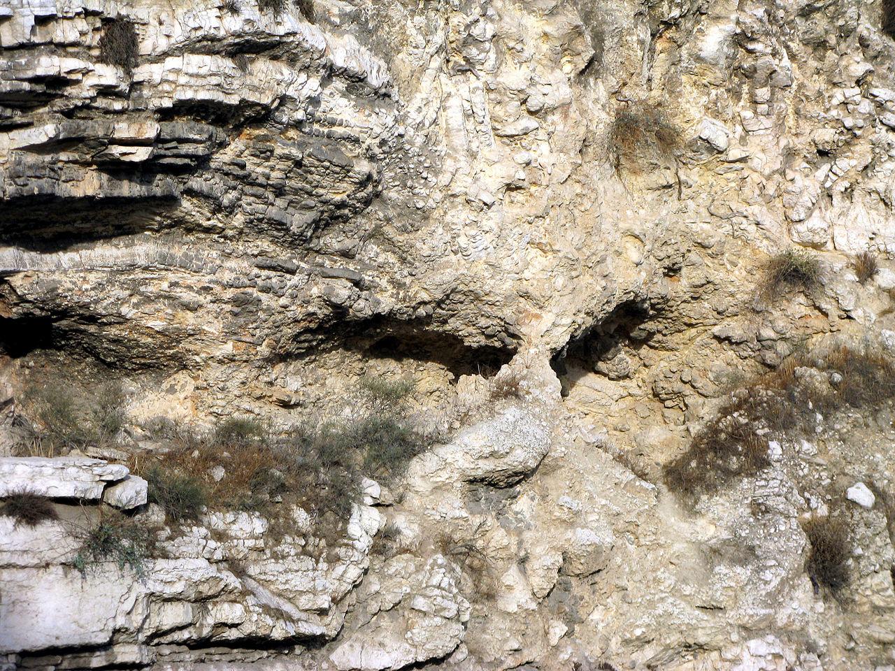 Скала в виде черепа