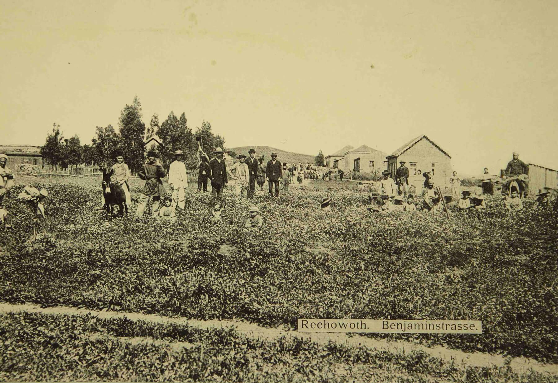 Рехвот в 1893 году