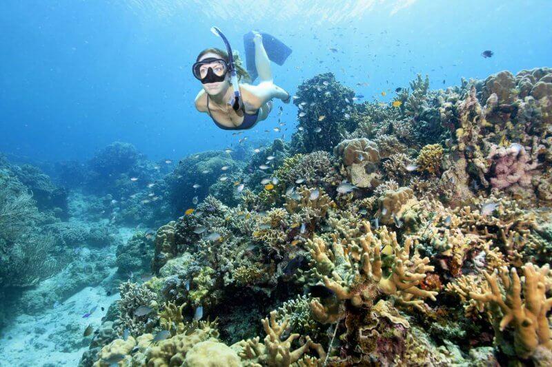 Снорклинг на Симиласнких островах