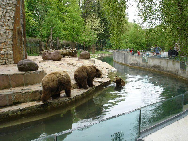 Аугсбургский зоопарк