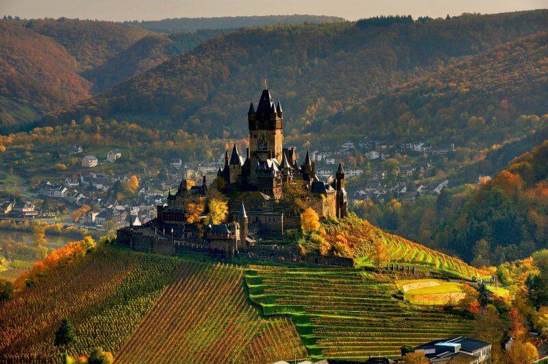 Виноградники замка Райхсбург