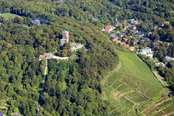 Гора Турмберг