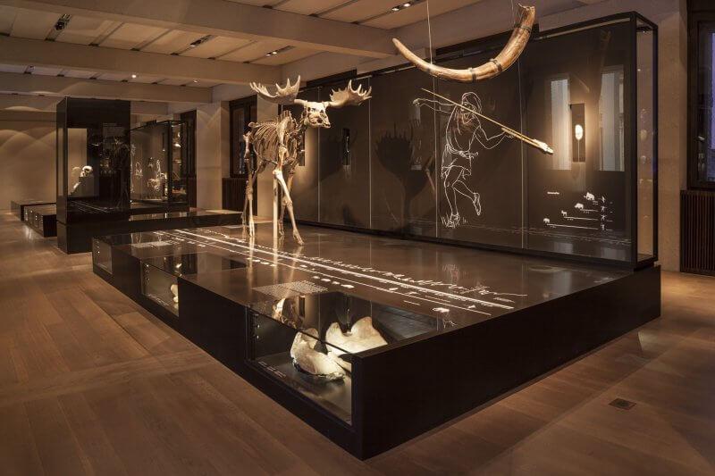 Новый музей