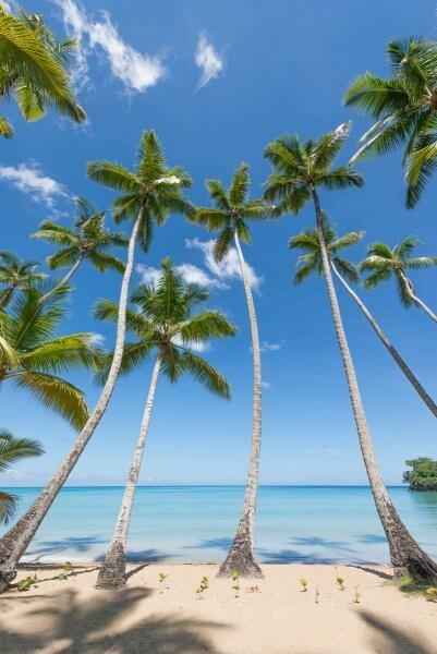 Фото пляжа Плайя Бонита