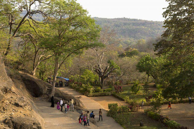 Национальный парк Санджай Ганди