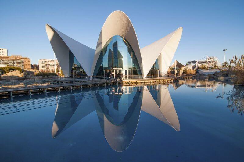Океанографический парк в городе Валенсия