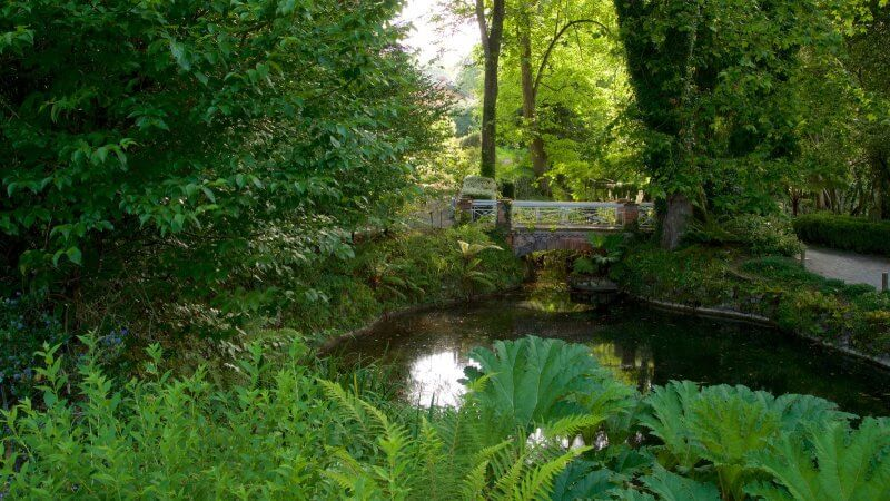 Ботанический сад  в Хихоне