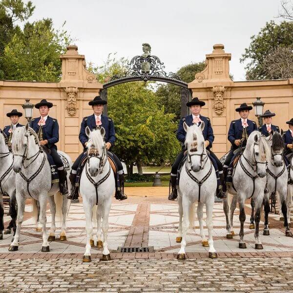 Королевская андалузская школа конного искусства