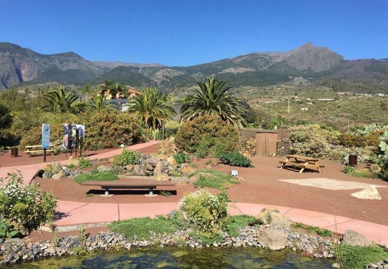 Ботанический сад в парке Гуимар