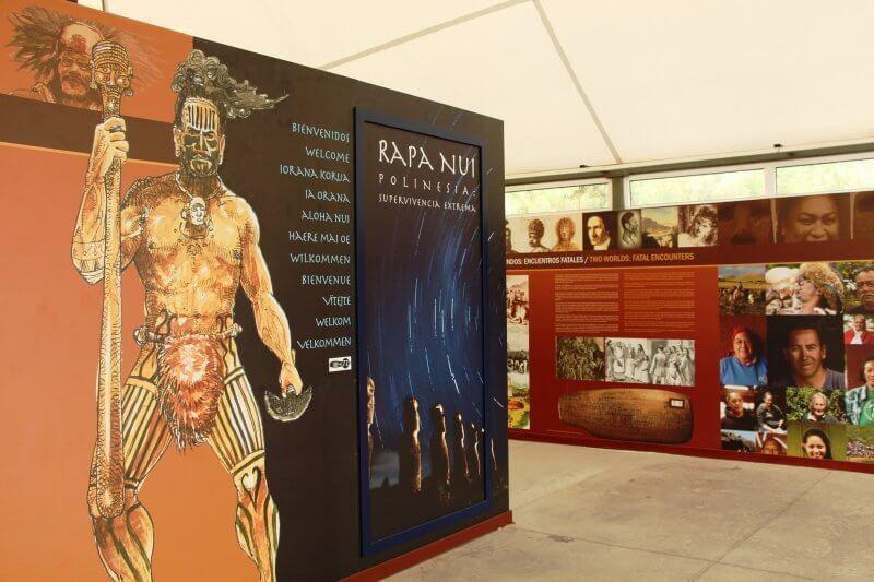 Экспозиция «Колонизация Полинезии. Рапа-Нуи: экстремальное выживание»