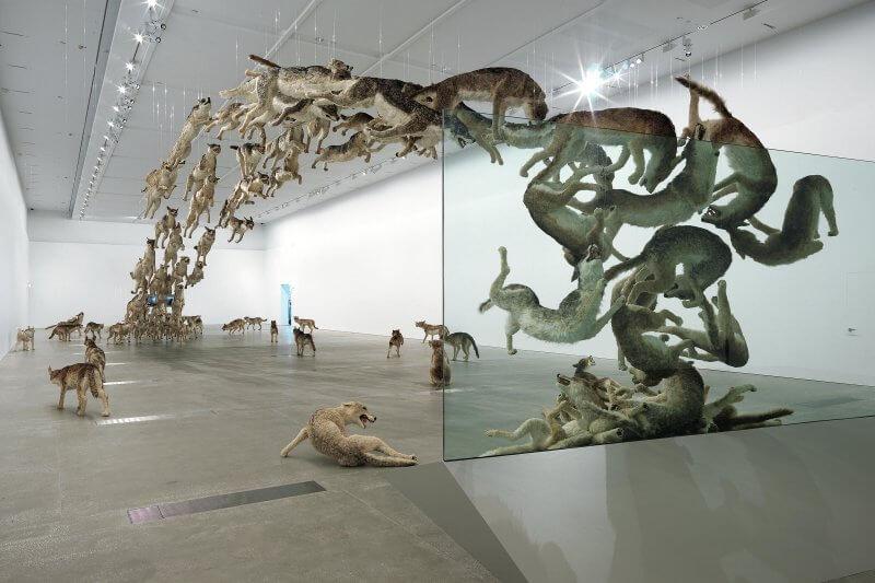 """Инсталляция """"Прямолинейность"""" в музее Гуггенхайма"""