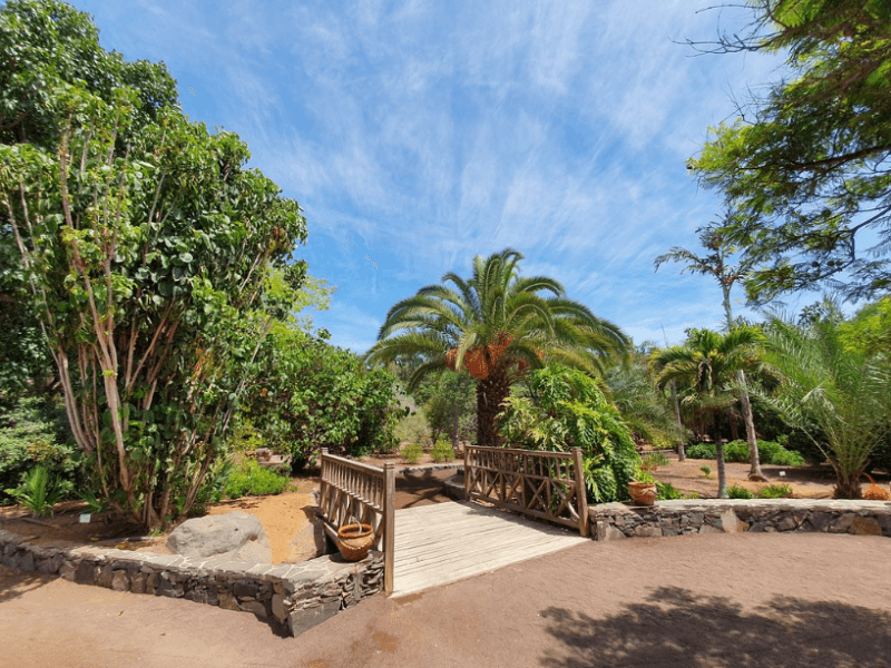 Ботанический сад Маспаломас