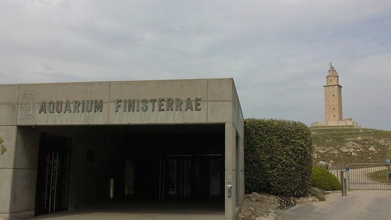 Аквариум Финистерре